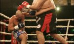 Kickboxer vs Sumoringer
