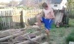 Professioneller Holzspalter
