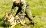 Russische Hundestaffel mit Spezialausbildung