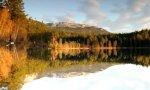 Optical Illusion at the Lake