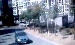 Motorized Bitch Fight