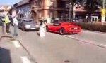 Ferrari-Rindvieh