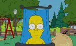 Homer Simpson - A picture every day Spoof