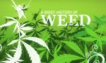 A GrassTale -  The History Of Cannabis