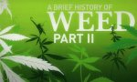 The History of Weed Part 2