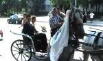Hochzeitskutsche mit zwei wilden Pferdestärken