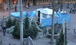 Weihnachtsbaum klauen