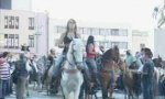 Pferde-Ausrutscher