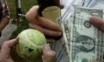 Die Elf-Dollar-Hundeball-Wette